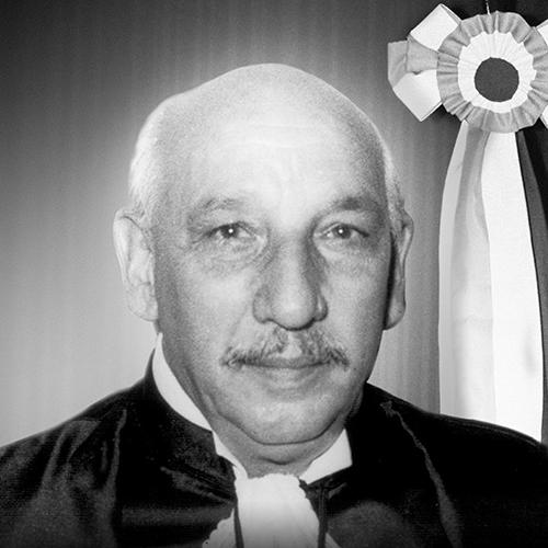 Hélio Peluffo