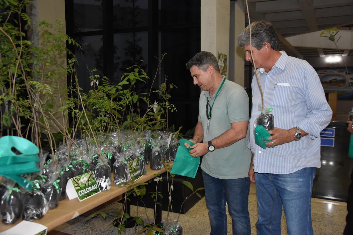 """Em comemoração ao """"Dia da Árvore"""" servidores do TCE e MPC-MS ganham mudas de espécies do Cerrado"""