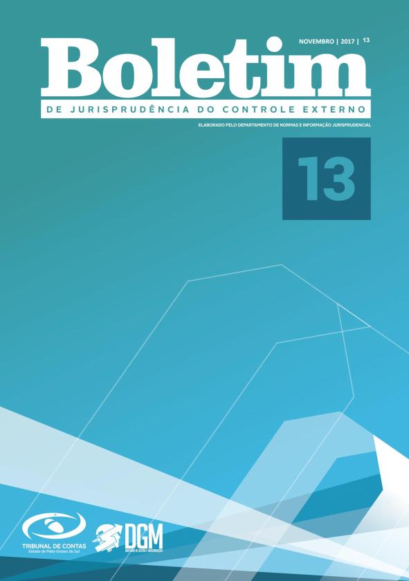 Boletim de Jurisprudência nº 13